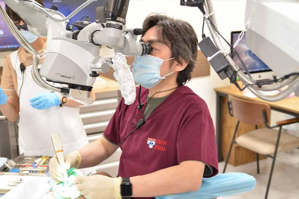 歯内療法専門担当医